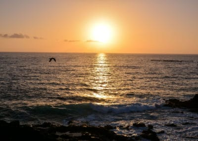 40804831 - sun setting on the atlantic ocean in tenerife canary island spain